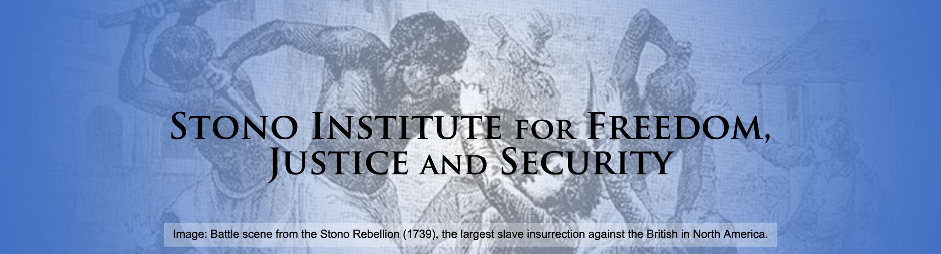 Stono Institute for Freedom, Justice and Security